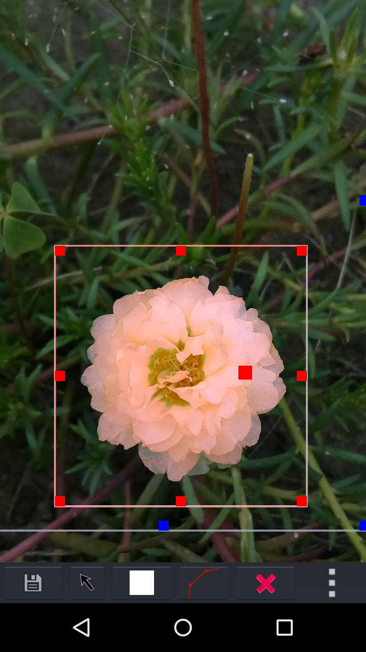AndCamera adjust the color of a object, use polygon selection to limit